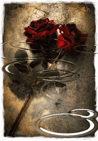 He aprendido....que nadie es perfecto, hasta que te enamoras...... He aprendido....que la vida es dura, pero ¡yo lo soy mas...... He ap...