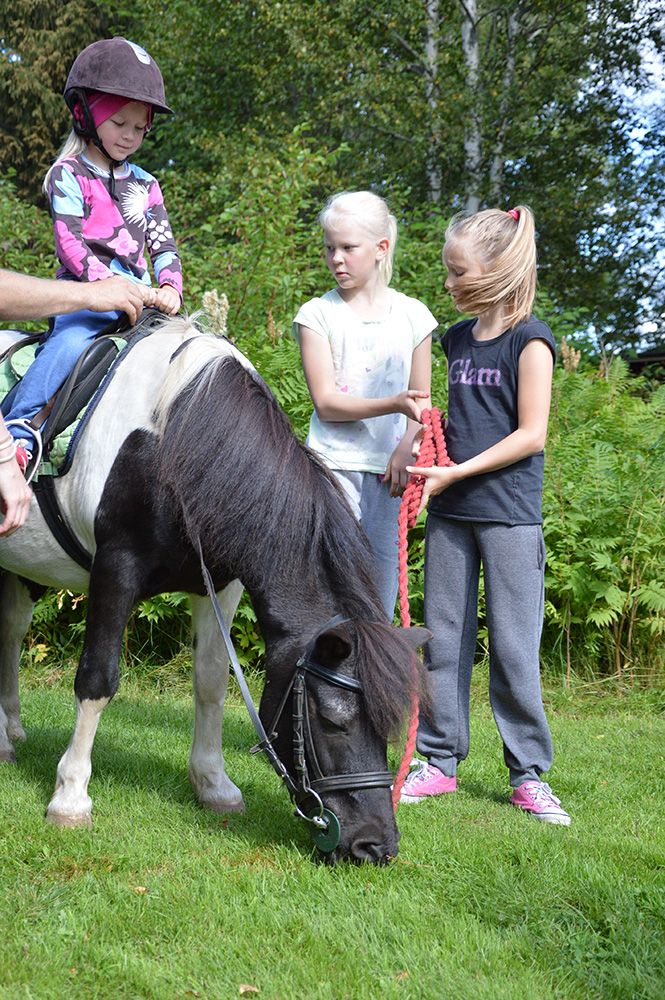 Lapset pääsevät ratsastamaan söpöillä poneilla talutusratsastuksessa. Luuppi, Oulu (Finland)