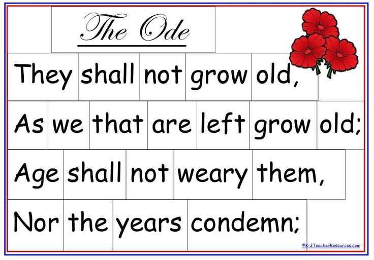 Classroom Ideas For Primary School ~ Anzac day activity teaching pinterest