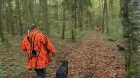 Feuilleton : Rencontre avec les chasseurs en Bourgogne - France 3 Bourgogne