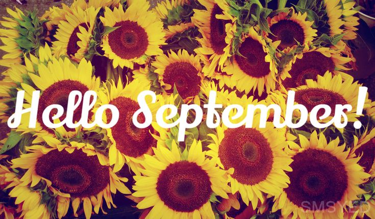 hello september  1happywallpapers - High Definition Free Wallpapers - Backgr...