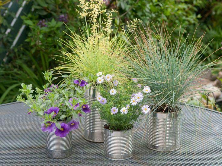 17 Best Ideas About Gräser Pflanzen On Pinterest | Rabatt, Garten ... Ein Hubsches Blumenbeet Planen