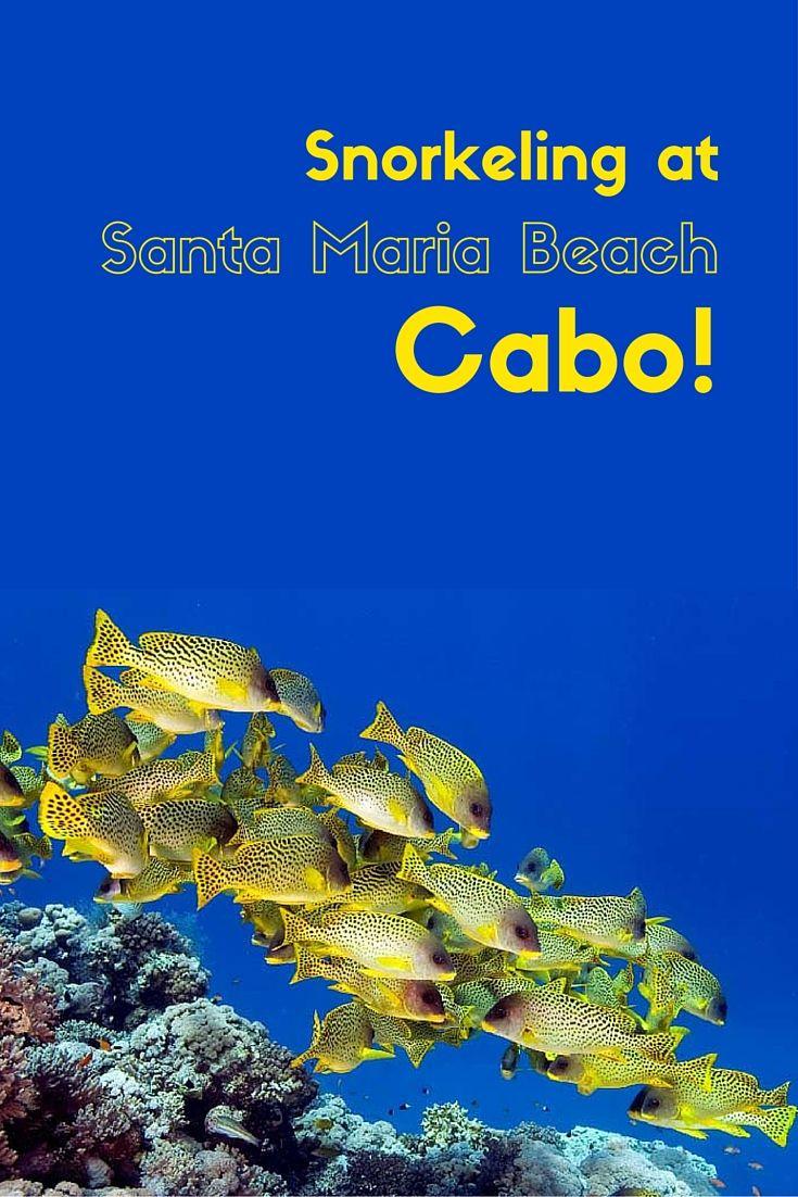 Practical info for visiting Santa Maria beach Cabo.