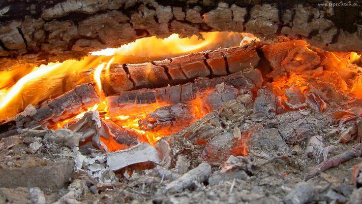 Ogień, Ognisko, Żar, Popiół