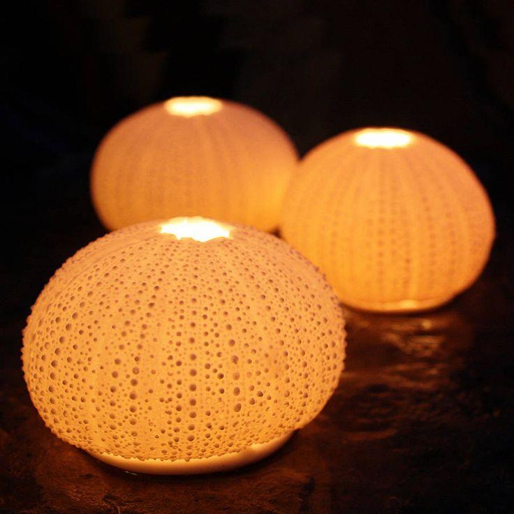 #lunac #porcelain #urchin #sea #ocean #light