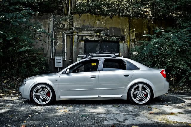 Audi Quot Peelers Quot B6 S4 Rims Pinterest Cars Doors