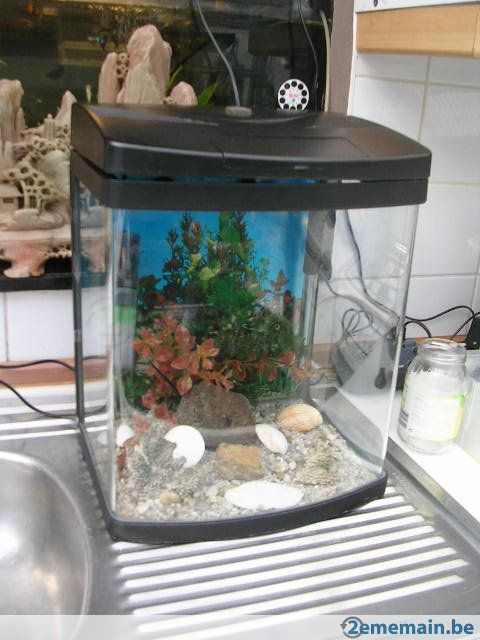 1000 id es sur le th me aquarium a vendre sur pinterest vente aquarium obliques v ups et. Black Bedroom Furniture Sets. Home Design Ideas