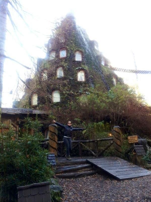 Montaña Mágica Lodge Chile - Hotel Reviews - TripAdvisor
