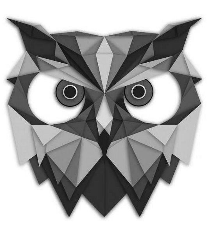 i sooo want to get this tattoo or something like it......i love the geometric owl #spiritanimal