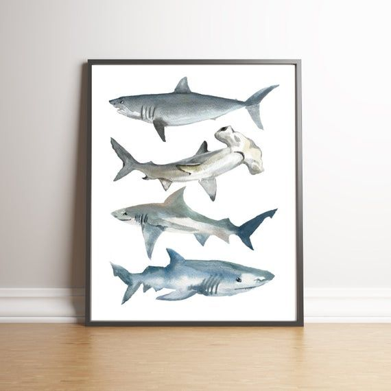 Shark Watercolor Print Shark Nursery Boys Shark Room Shark Etsy In 2020 Shark Nursery Shark Themed Bedroom Shark Art