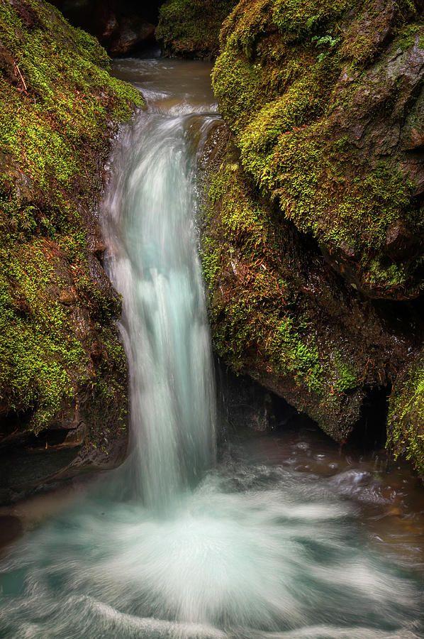 Tiny Waterfall by Jenny Rainbow