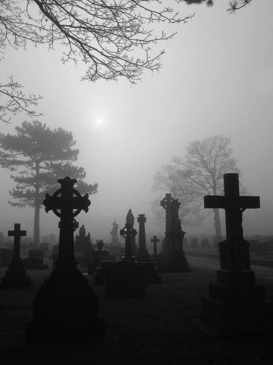 I've often thought that old cemeteries have a creepy, spooky atmosphere. Beautiful and peaceful places during daylight hours, but on cold winter evenings, when night begins to fall and the mist rolls in..... it's very different.