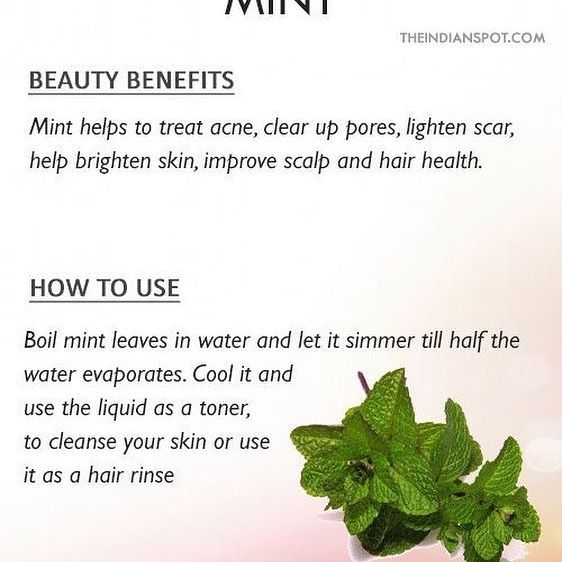 Beauty benefits: Mint has skin cooling and anti-inflammatory properties that make it a great treatment for acne, inflammation, insect bites, oily skin etc. How to use: Make a paste of mint and water and apply it on your face as a face mask. Wash off after 20 minutes. Crush leaves and apply fresh juice on acne, insect bites and on the t-zone that tends to get oilier. #mint #skincare #haircare #beauty #homemade #tips #theindianspot #tagafriend