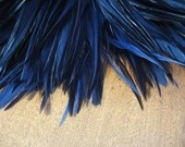saddle feathers