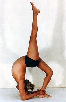 241 best yoga images on pinterest  iyengar yoga yoga