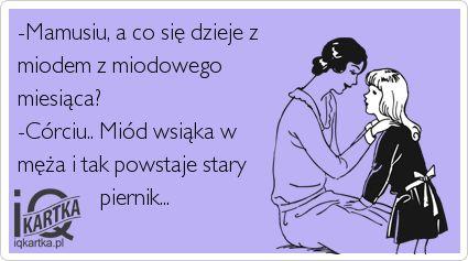 Zdjęcie: www.iqkartka.pl