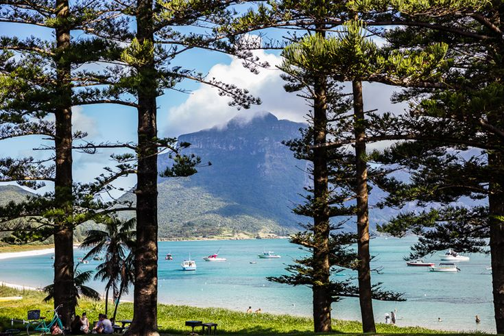 The view from our local cafe   Lord Howe Island