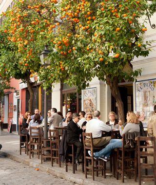 Seville,Spain   Home of the best Orange Juice