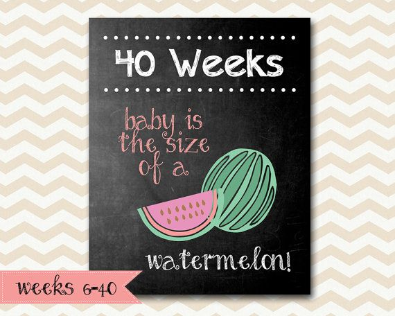 Pregnancy Weekly Chalkboard Baby is the Size of a... Print your own Pregnancy Photo Prop! This package includes 35 weeks of images (weeks 6-40). You will receive the 8x10 files in jpeg format. ♥Looking for a bigger size? See our 11x14 version here: https://www.etsy.com/listing/212822043/weekly-pregnancy-chalkboard-baby-is-the?ref=shop_home_active_1 ♥Check out our other props and announcements! https://www.etsy.com/shop/TinyLittleDots?section_...