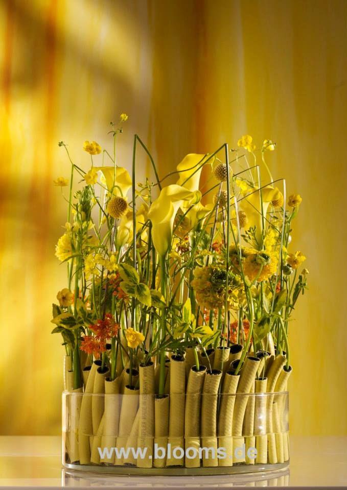 #Flowers • Blooms.de