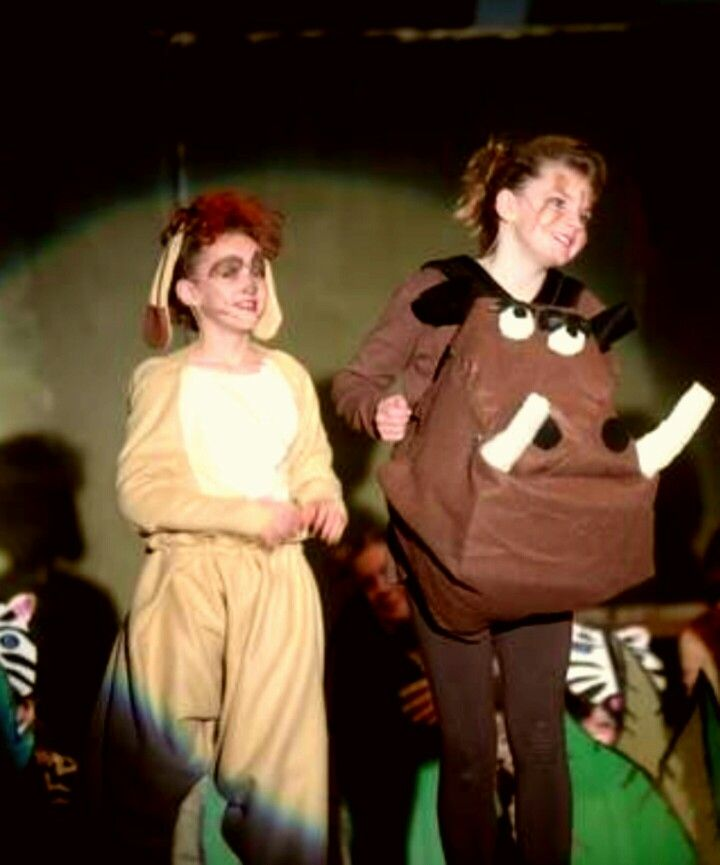 Timon and Pumbaa costumes. DIY