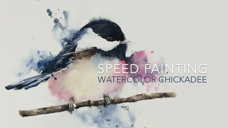 Speed Painting: Loose Watercolor Chickadee