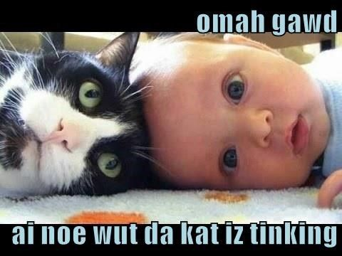 Top 25 Memes Of The Week Cheezburger Users Edition 177 In 2021 Funny Babies Memes Cheezburger