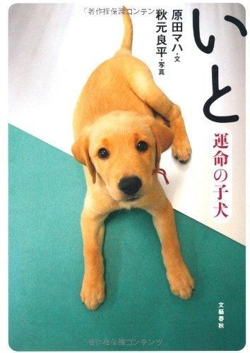 いと―運命の子犬 原田 マハ