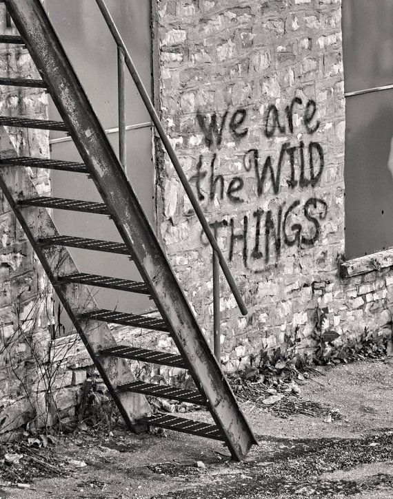 The Hespeler Wilds Fine Art Print      Shot in Cambridge Ontario graffiti stairs wild things Size : 11x 14 inches black and white on Etsy, $39.63 CAD