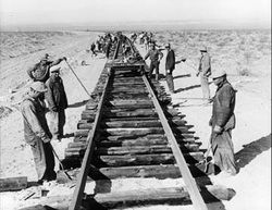 (Picture After the Gold Rush many Chinese immigrants stayed to earn more money. They worked on building the western leg of the Central Pacific Railroad.)-Originally they were gold miners during the California Gold Rush of 1849. Then they built the transcontinental railroads in 1869.Then they built the levies of California's Sacramento Valley.Those who were not expelled from the United States by the Chinese Expulsion Act of 1882, settled down to standard shops in the cities and other jobs.