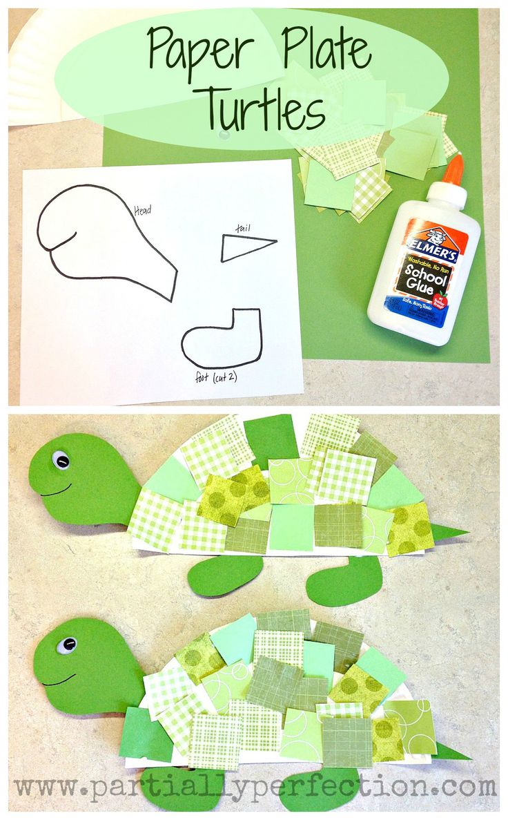Paper Plate Turtles ~ template included! www.partiallyperfection.com
