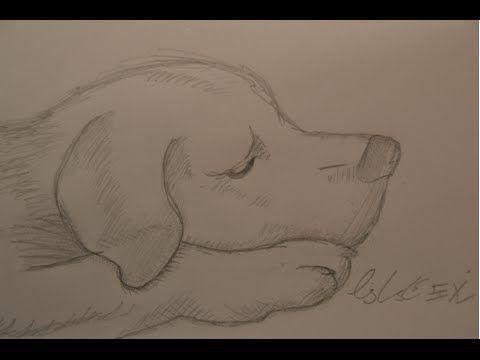 Ganz einfach zeichnen lernen 20: Tiergesichter – Y…