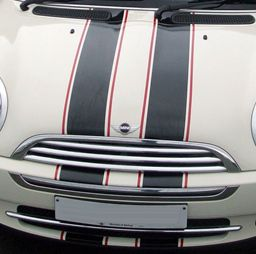 customs+pinstriping+on+mini+Cooper | ... of Grafx : 2 color Rally racing stripe stripes pin fit Mini Cooper