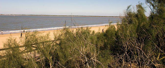 Playa de la Jara, Sanlucar de Barrameda, Cádiz