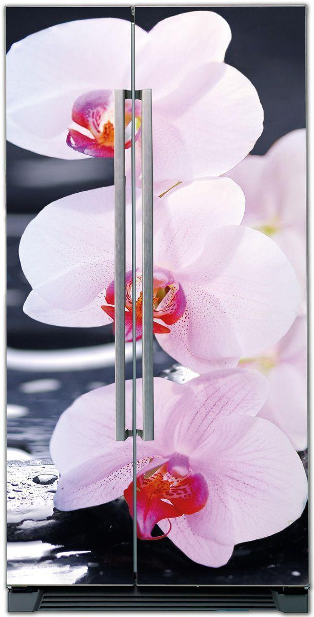 Fridge Sticker – SPA Orchids