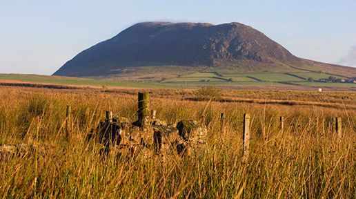 Slemish Mountain. Slemish near Ballymena is said to have been home to St. Patrick for at least 7 years during his time in captivity in Ireland. It was in this area that our Patron Saint tended pigs before making his escape back to Wales. Image: Northern Ireland Tourist Board.