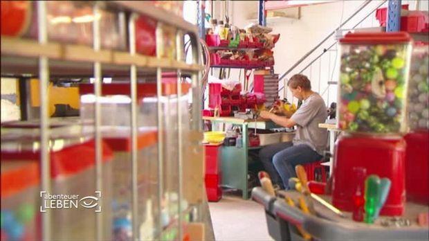 TV-Reportage über Kaugummiautomaten-Aufsteller
