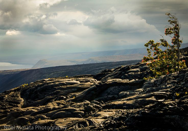 Volcanoes National Park, #Hawaii #BigIsland