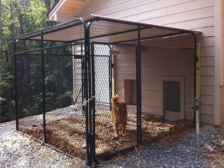 1000+ ideas about Outdoor Dog Kennels on Pinterest | Dog Kennels, Dog Runs and Chain Link Dog Kennel