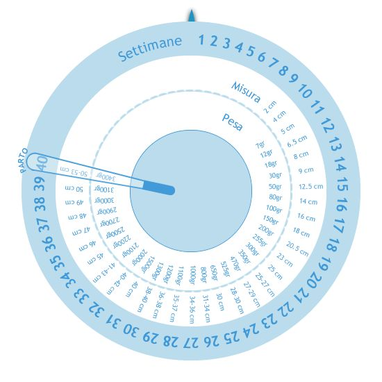 Ruota della gravidanza | Calcolatrici