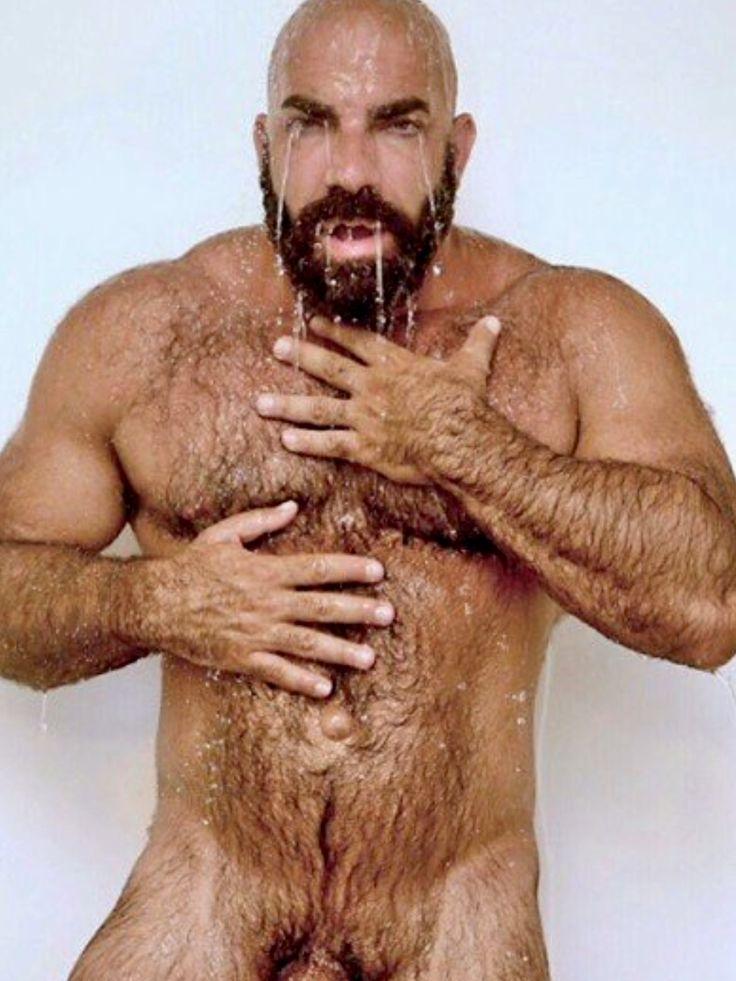 Bear hairy gay
