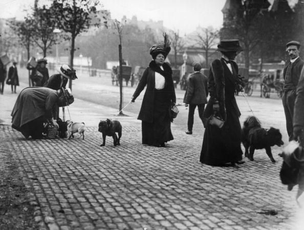 Early arrivals at Crystal Palace for the Kennel Club Show 1910