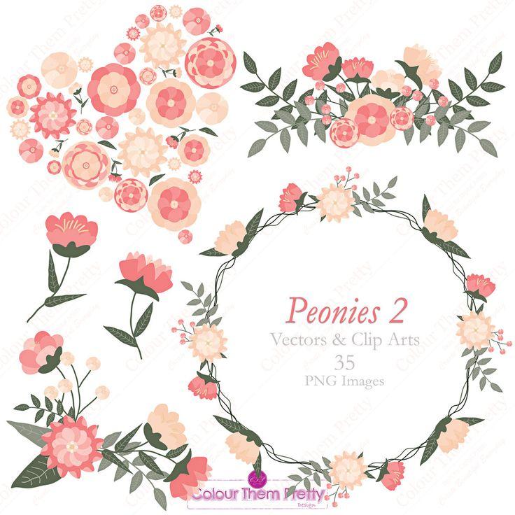 Peonies 2 {Vectors and Clip Arts - Standard License}