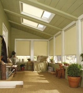 9 Best Octagon Skylight Calgary Skylights Images On