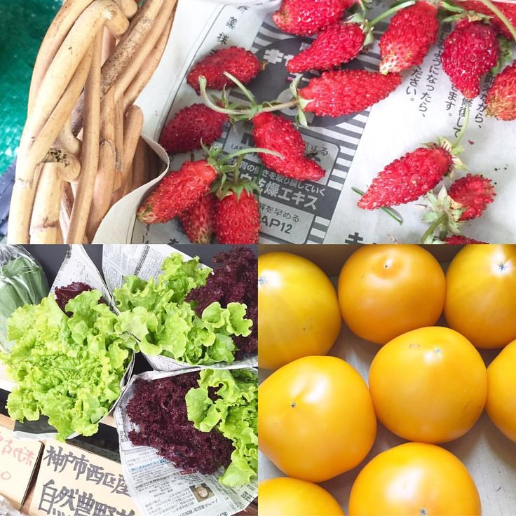 EAT LOCAL KOBE FARMERS MARKET — STARTING on April 16th, 9am to 12:30pm, THIS...