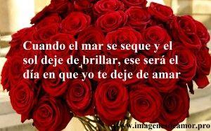 Ramo de rosas rojas con palabras de amor: Cuando el mar se seque y el sol deje de brillar, ese será el día en que yo te deje de amar