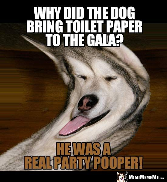 Dog Joke: Why did the dog bring toilet paper to the gala ...