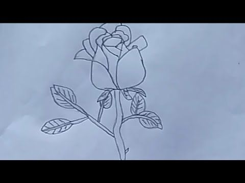 Cara menggambar bunga mawar mudah dan gampang | Cara ...