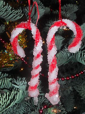Borax ornaments...your kids will love this easy craft made from pipe cleaners and borax