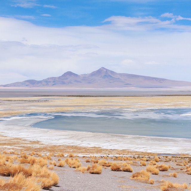Such beautiful pastel colors in Chile's Atacama desert!